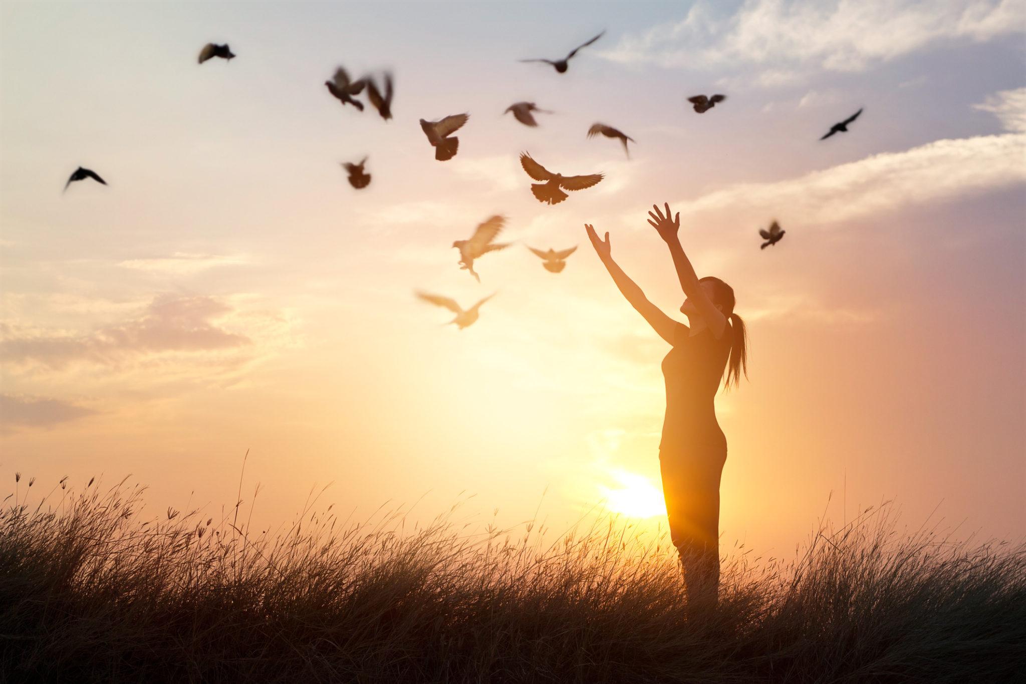 Cuộc sống hạnh phúc và bình an